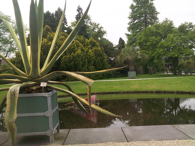 Botanic garden Leiden