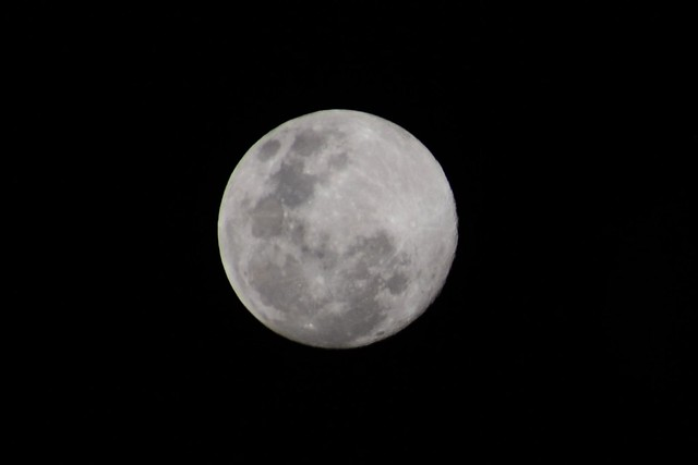 Full Moon on Moon Festival 22/9/10 from Sydney