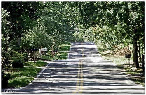 road trees newyork forest nikon longisland mailboxes d3000 easthamtpon