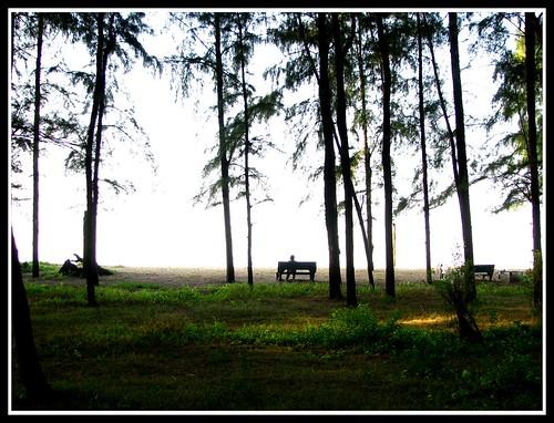Waiting.. by Manoj Kengudelu