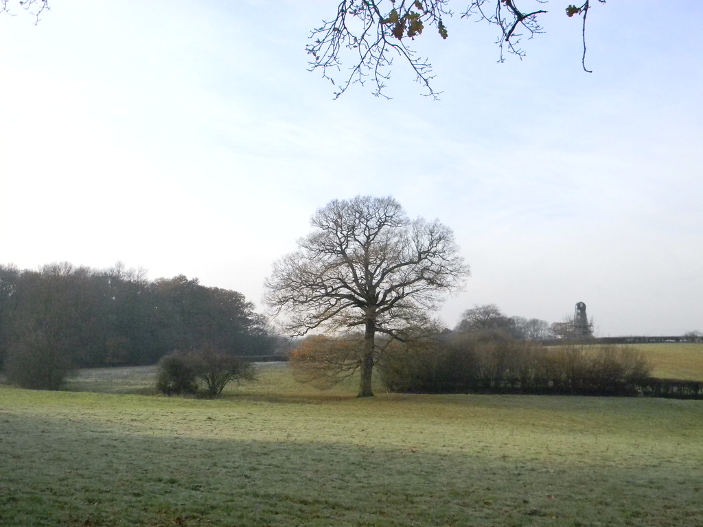 Frosty field with windmill Ockley to Warnham