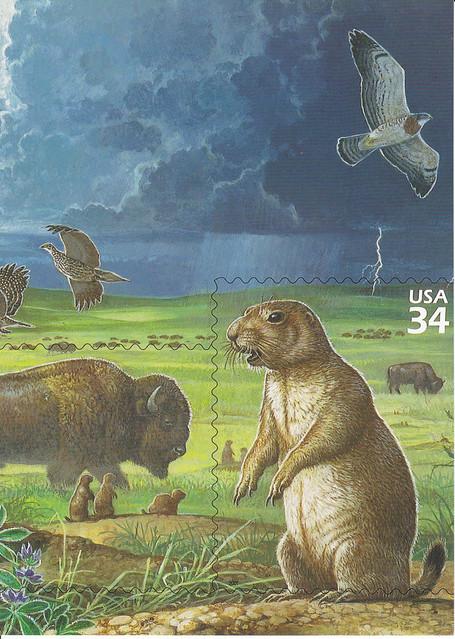 USPS Great Plains Prairie Stamp Sheet Detail Postcard