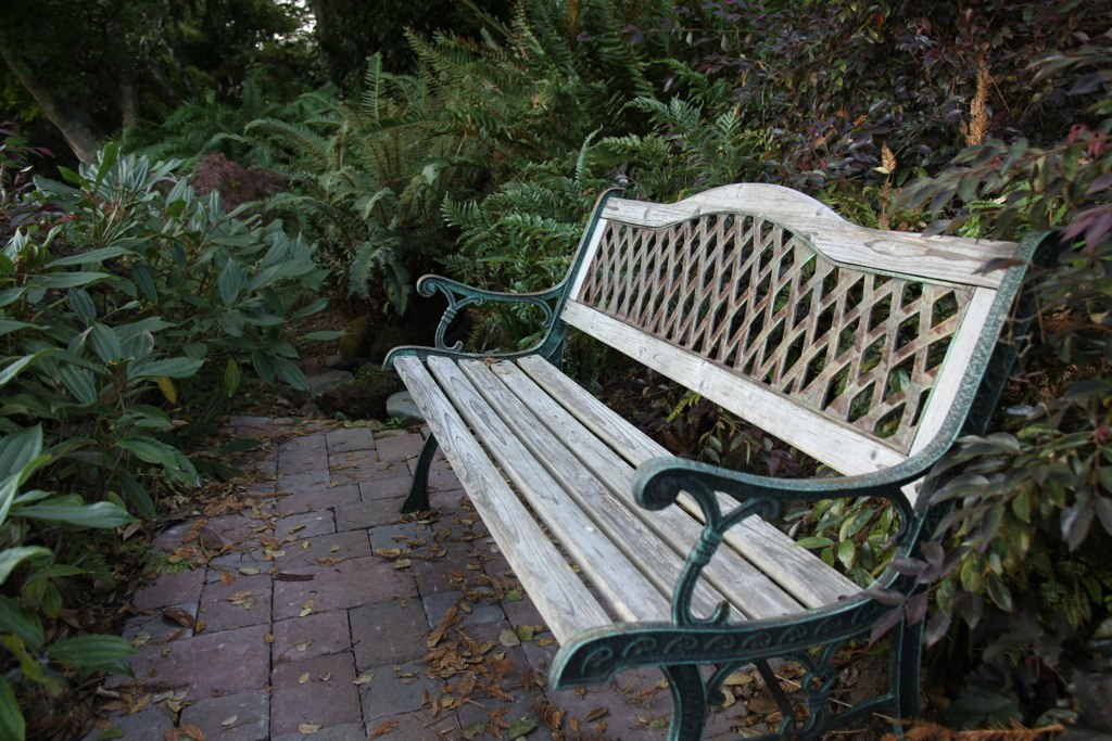 Awe Inspiring Bench Near The Fountain Inverness Secret Garden Cottage I Andrewgaddart Wooden Chair Designs For Living Room Andrewgaddartcom
