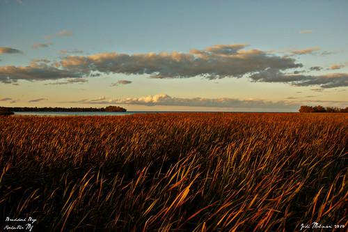 park lighting blue sunset sky orange ny nature water grass yellow clouds outside outdoors dusk wildlife sony horizon rochester greece a350 braddockbay