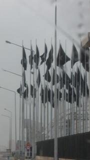 Black Flags, no place, no date