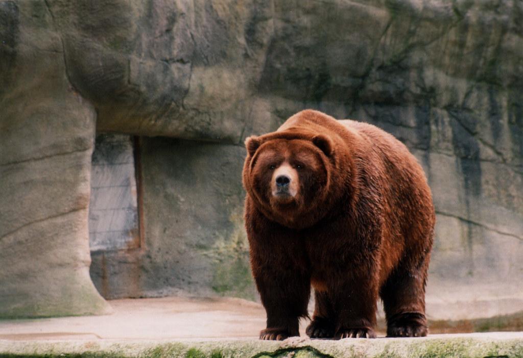 Hagenbecks Tierpark Jobs