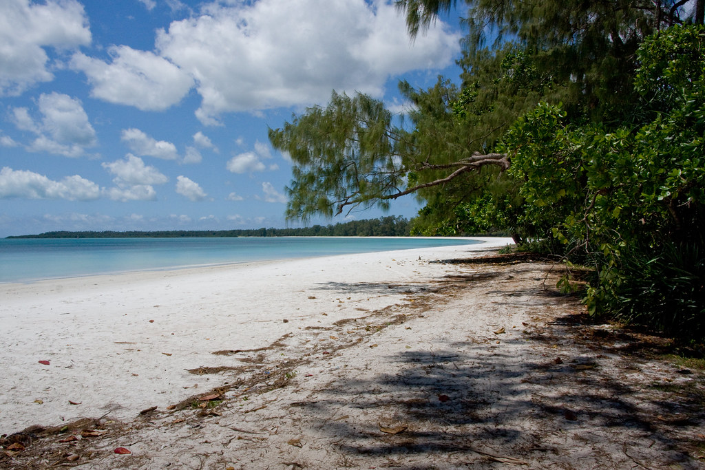Pemba Island - Vumawimbi beach - Things to Do in Pemba Island
