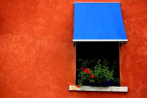 Orange and Blue | by Lonewolf_
