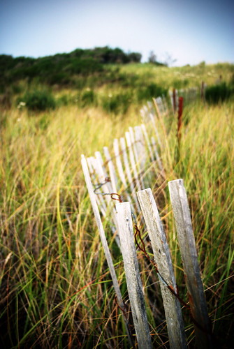 ocean travel blue sea vacation sky usa beach grass america fence 50mm 1 coast washington nice sand nikon focus rust afternoon dof thankyou bokeh dream meadow sunny explore coastal forgotten abandonded pacificnorthwest pnw daydream picket grassy grayland whitewood utatafeature