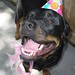 Dakota Birthday 2010