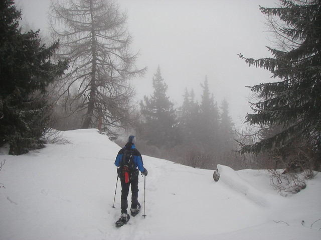 Sneeuwschoentocht Silvretta