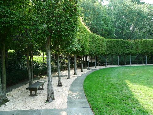 Hornbeam Colonnade at Dumbarton Oaks   by pov_steve