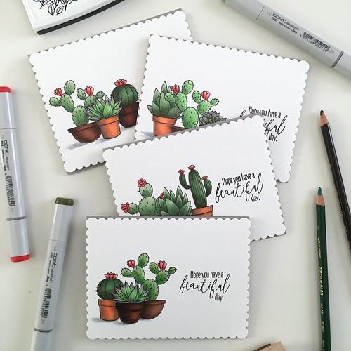 MFT sweet succulents card set   by Kimberly Toney