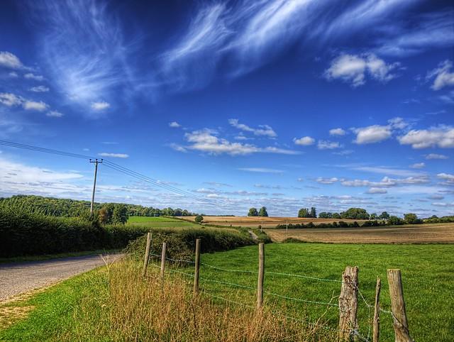 Avington Landscape, near Winchester