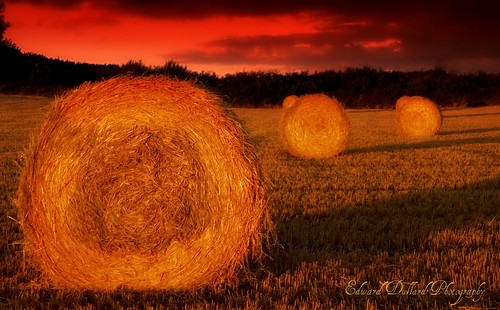 sunset nature landscape dusk haybales mywinners platinumphoto edwarddullardphotographykilkennyireland