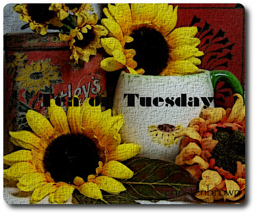 Tea on Tuesday, Sunflowers and Stuff | by Christen Brown