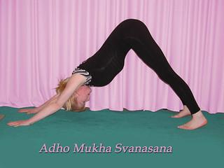adho mukha svanasana a  wwwtruetriangleyoga  flickr
