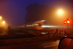 Misty train