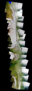 AdamGriffithMay18-89-126-ChandeleurIslands-LA