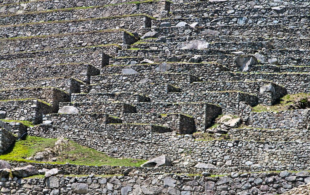 Terrazas De Cultivo En Machu Picchu Peru Detalle De Las T