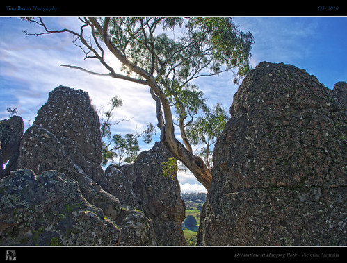 light sky sun tree rock mystery geotagged rocks magic australia victoria aboriginal creature hdr hangingrock mtdiogenes tomraven aravenimage q32010 geo:lat=37330447 geo:lon=144594841