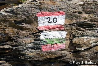 Pordoi (BZ), 2010, Sui sentieri militari della guerra 1915-18.