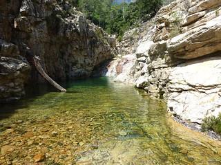 Entre la confluence Ricu et la confluence Valdu Grande : bief rocheux à contourner en RD