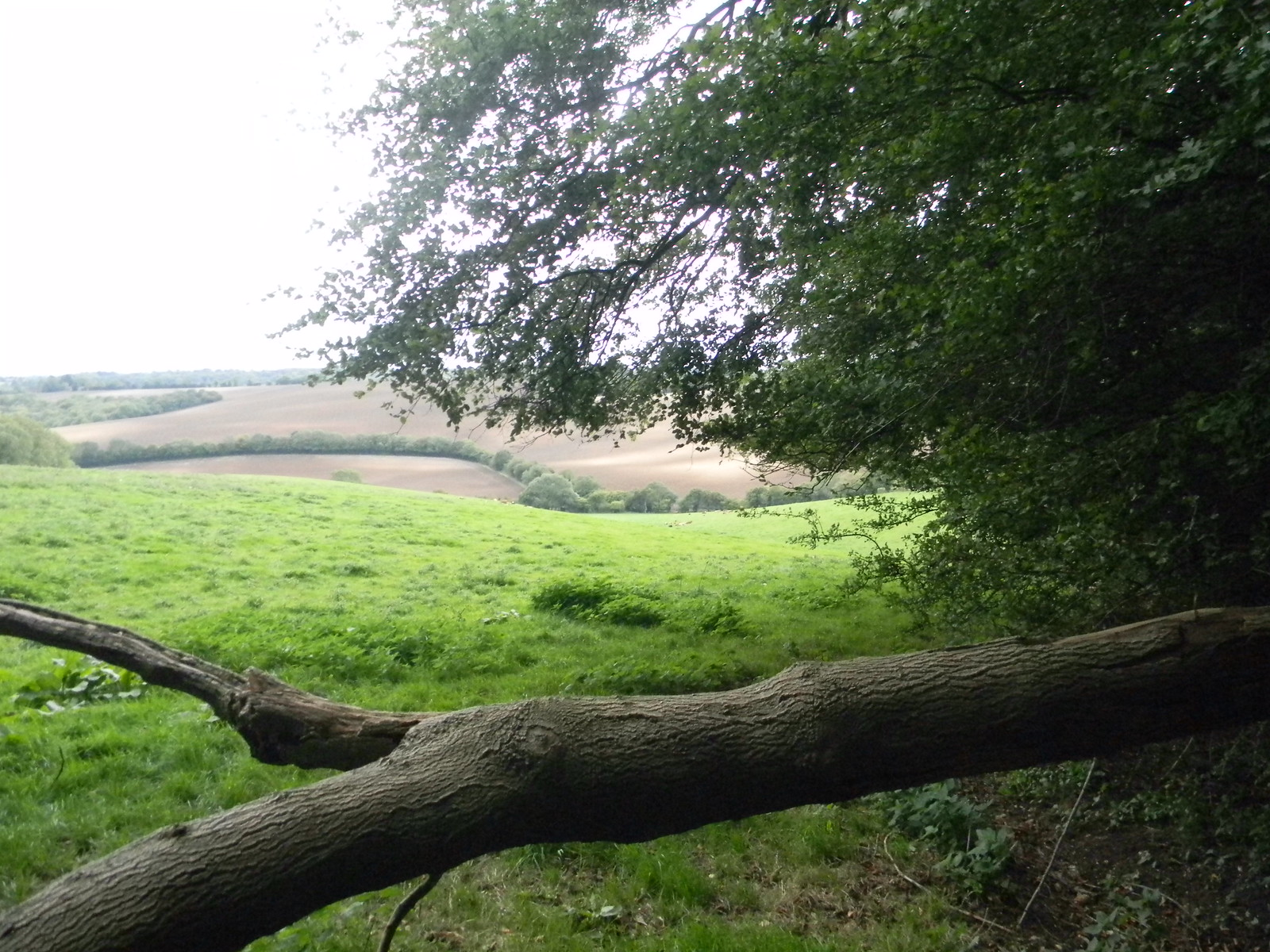 View Saunderton Circular via Bledow