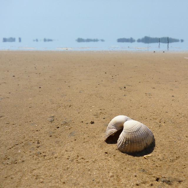 Fatamorgana on the shoreline of the Wadden island Texel