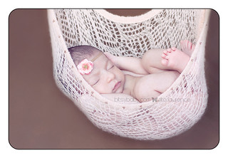 nova infant photographers | by Bitsy Baby Photography [Rita]
