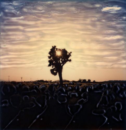 polaroid sx70 sonar emulsion manipulation time zero tz instant film joshua tree sunset el mirage dry lake california ca sun silhouette mojave desert toby hancock photography