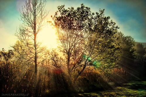 light sun fog sunrise angle sony wide beams h9 72mm