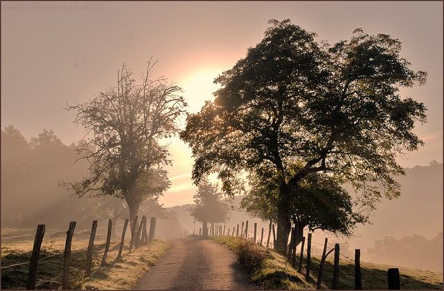 ~~Lumière du petit matin sur mon chemin~~