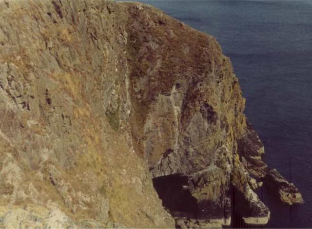 Black Head from Sleany Bay