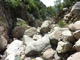 :Dans la montée avant la confluence 571m : dans la partie ouverte et le champs de blocs