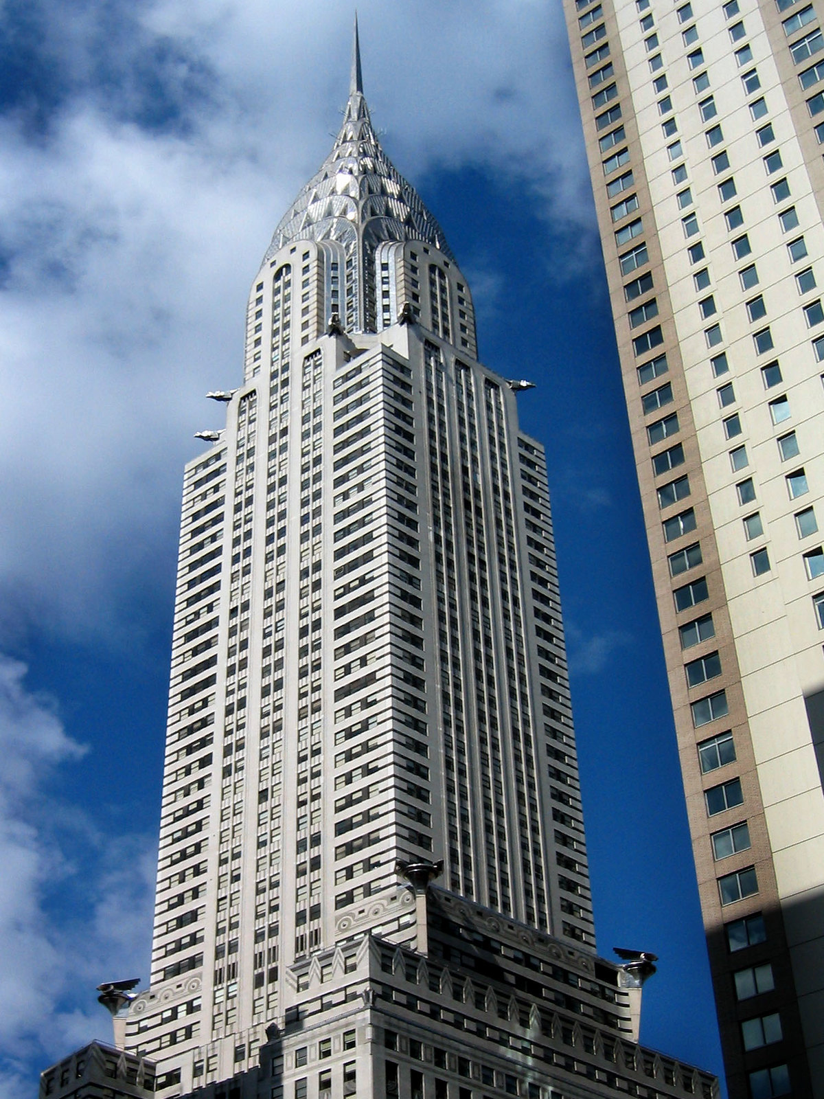New York 81