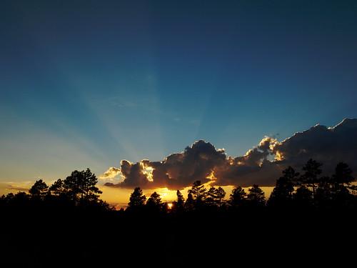 landscape sunset arizona pinetop pinetoparizona whitemountains woodlandlake pinetoplakeside nature crepuscularrays sundrawingwater sunrays riparian riparianzone riparianarea riparianhabitat