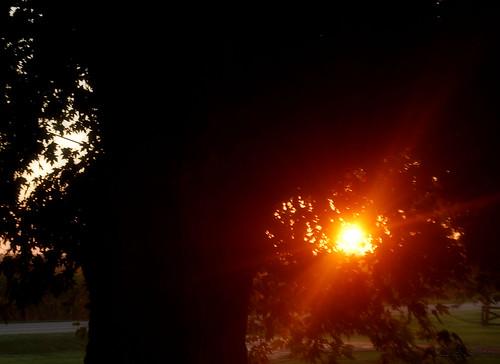 morning ohio summer sun sunrise nikon august 2010 d60 fairfieldcounty stoutsville