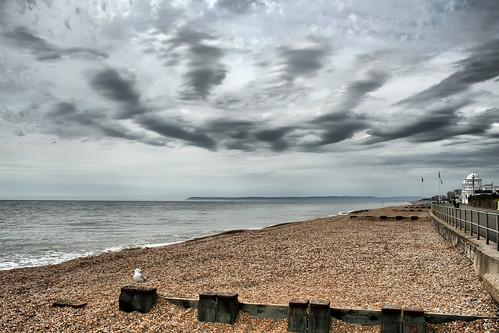uk sea england sky beach clouds grey unitedkingdom seagull shingle pebbles promenade railings englishchannel beachyhead colonnade groynes lamanche bexhill breakwaters sussexdowns coastuk larigan phamilton welcomeuk
