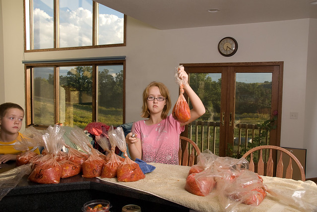 Freezing Tomatoes for the winter