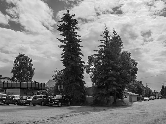 Summer Solstice Fairbanks Shared-3