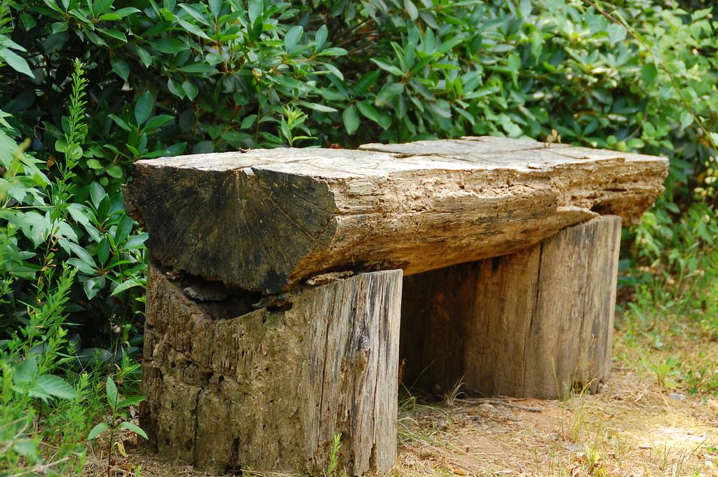 Tree Trunk Bench Watch Out For Splinters Joyce Flickr