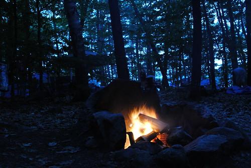 Fire!   by Lizard10979