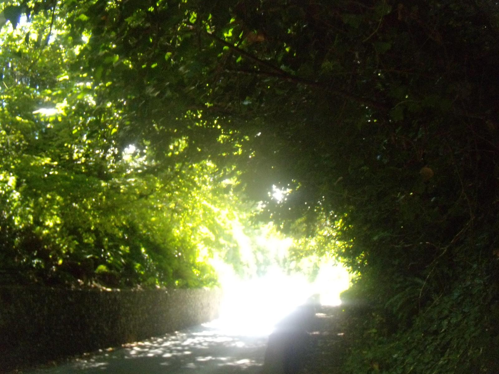 Strong sun, Wilmington Berwick to Birling Gap