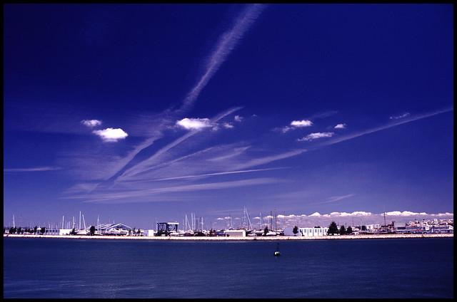 Portimão Estuary 2010