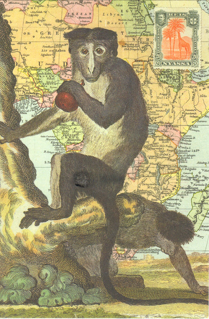 Monkey Map Art Postcard