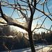 2001 November 10–12: Everyday Life in Kiruna