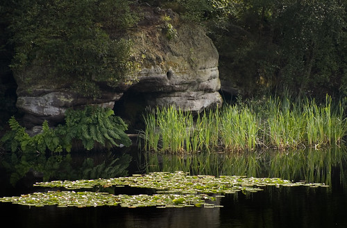 Lake Wood, Uckfield - Boat House Cave, Bulrushes and Water Lilies