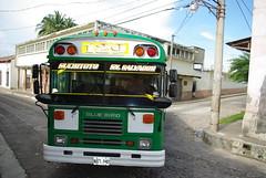 IMGP6685