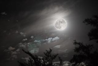Albuquerque Moon | by Jason Bache
